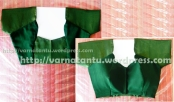 Raglan Style Sari Blouse with Princess Line completed
